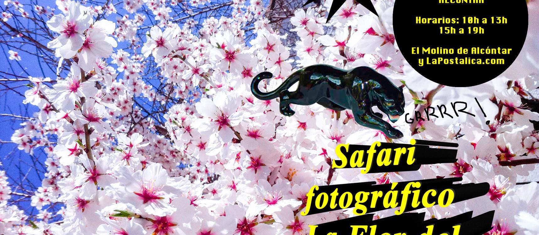 Safari fotográfico La Flor del Almendro